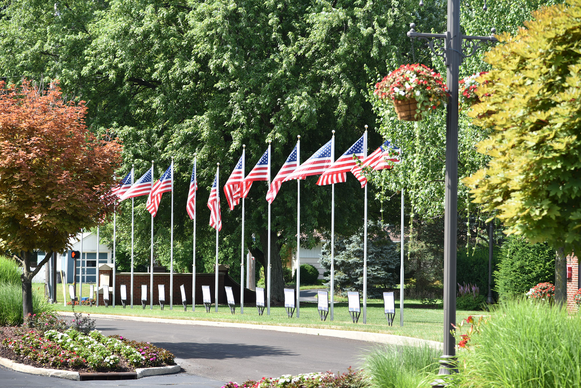 Flags in a park