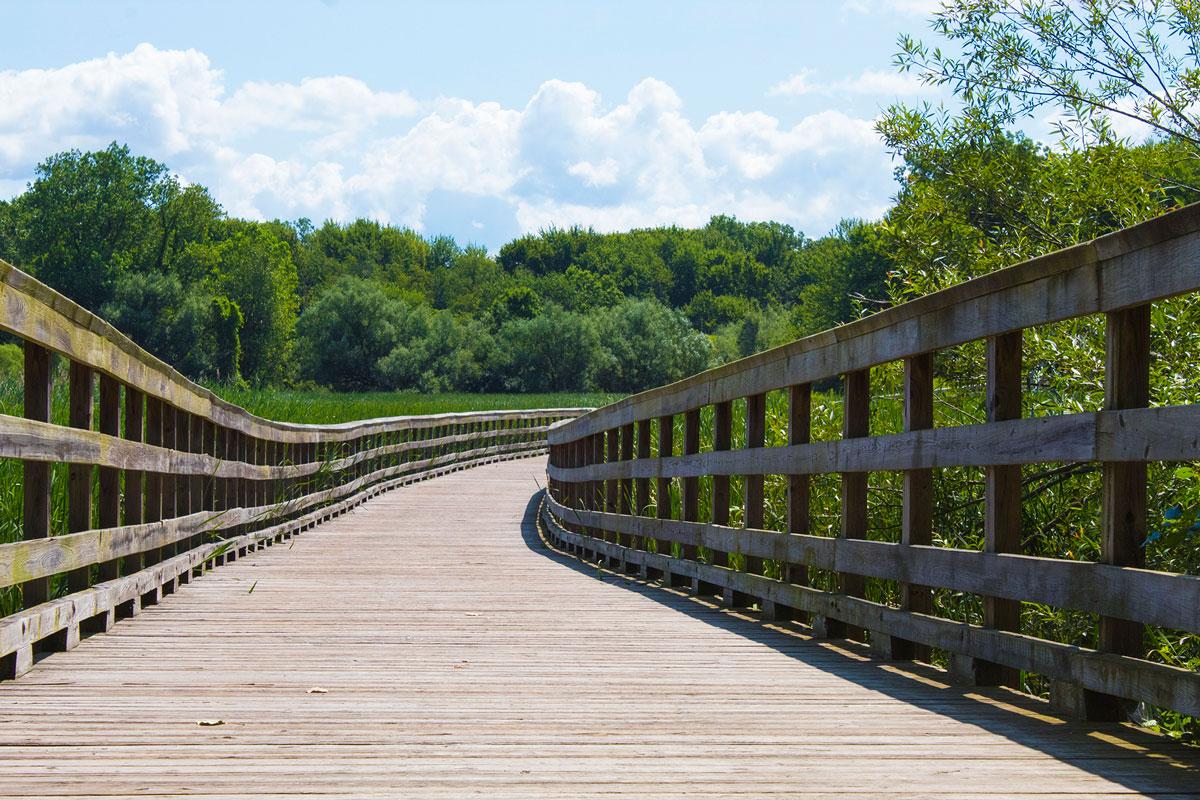 City Park Bridge