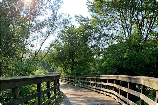 Lake to Lake path